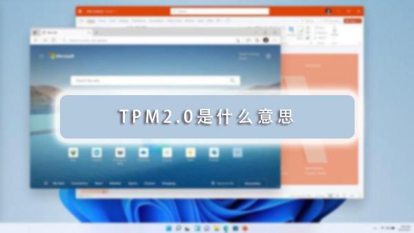 TPM2.0是什么意思